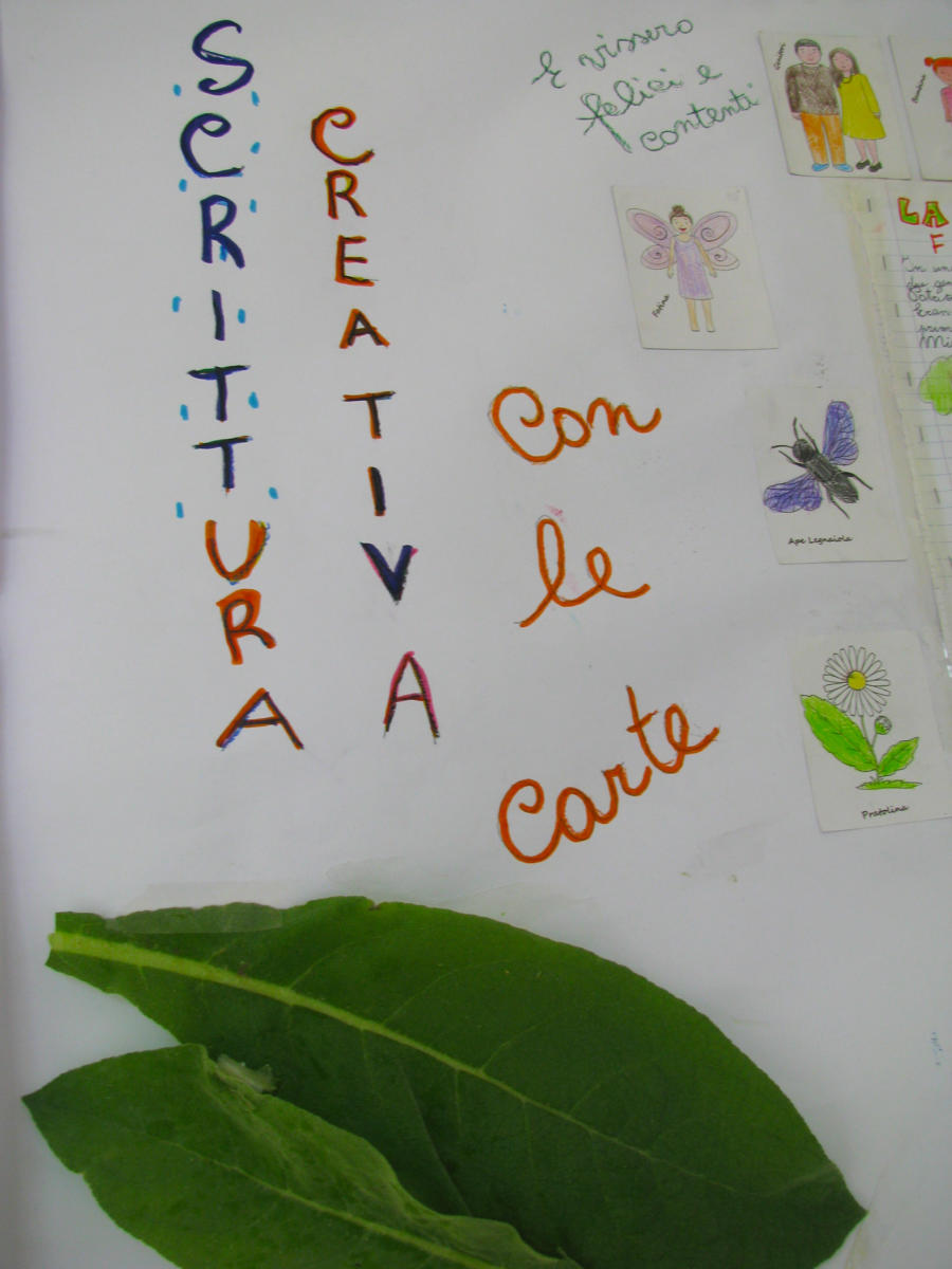 Scrittura Creativa Naturalistica con ausilio di carte didattiche